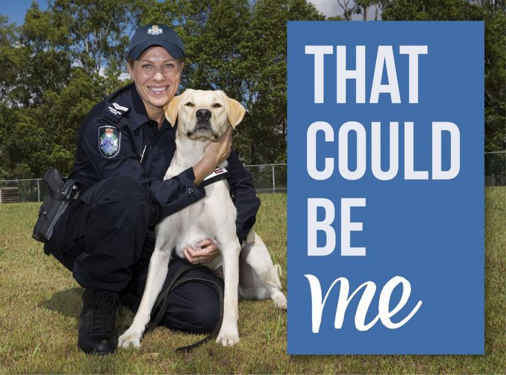 Meet Senior Constable Jaye Lilley and her partner Police Dog Turbo. Together they are a crime-busting duo who keep drugs off the streets.