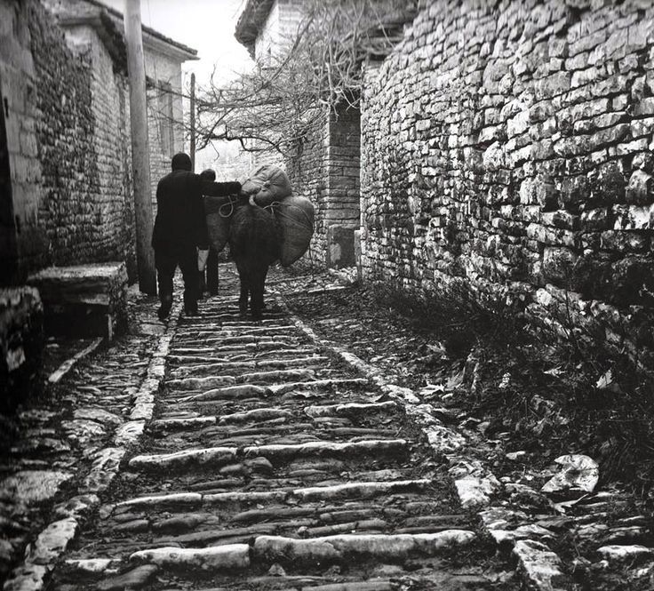 Μονοδένδρι Ζαγορίου «Φωτογραφίες και Αναφορές» από το Φώτη Καζάζη