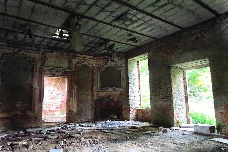 Brzezinka (powiat Oleśnica) Resztki nadziei dla zabytkowych zgliszczy odbiera pobliskie gospodarstwo, skąd dochodzi nieznośny smród obornika...