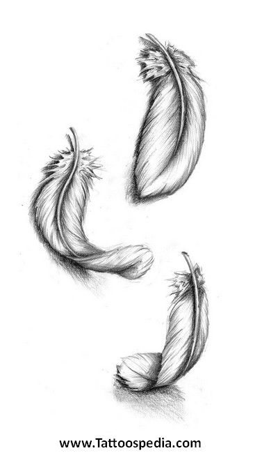 how to draw fluffy feathers
