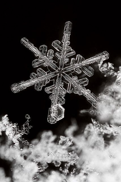 Catch a snowflake like this...do they really even exist??