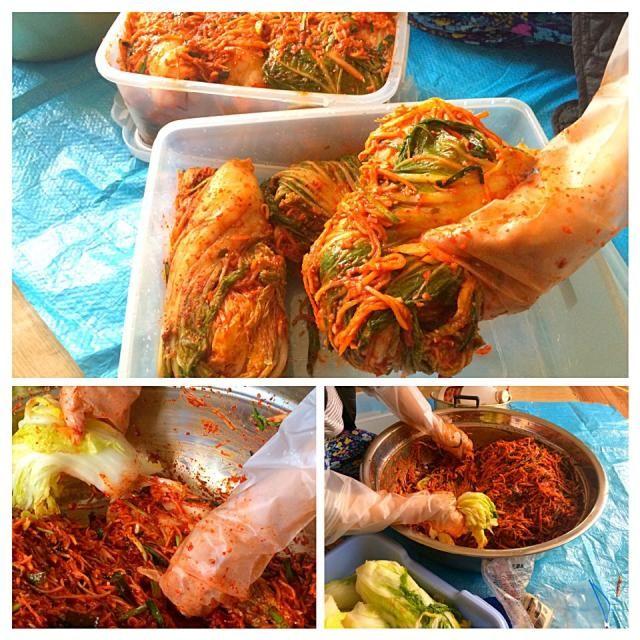 妻がキムチを漬け込むのを見ながら、レシピを書き留めました。 - 212件のもぐもぐ - 我が家のキムチ作り(김장) by juneshun