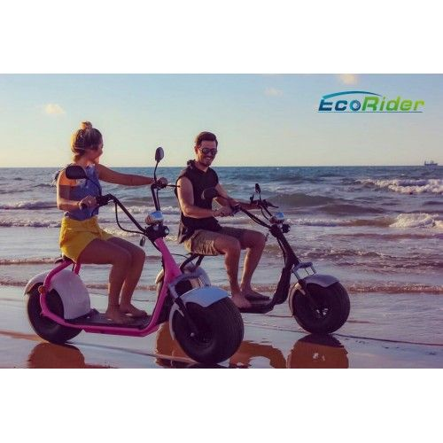 EcoRider EEC Zertifikat Citycoco LT019 Zweirad Elektroroller Harley Design