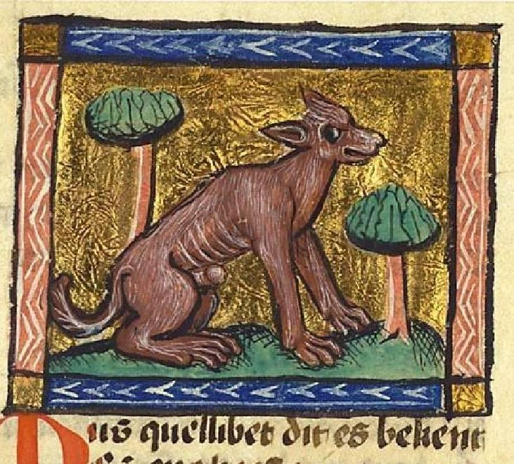Meet the musquelibet, a creature from the medieval bestiary. The brown animal was the size of a stag and (wait for it)... it had an abscess on its private part. Luckily the fluids from the abscess had a lovely musk smell.