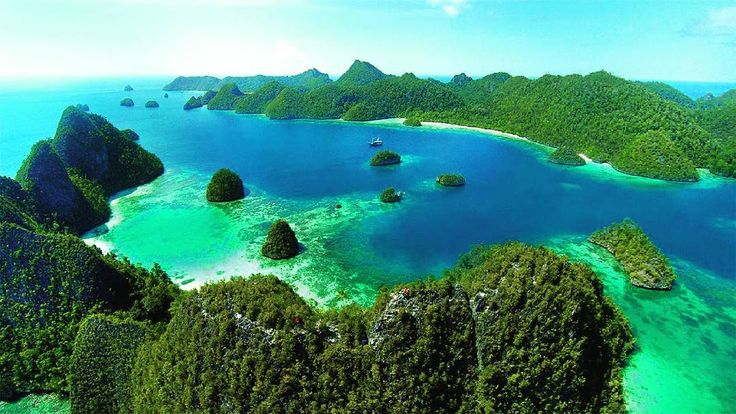 Raja Ampat in Papua is a great dive site for recommended for underwater amaze our eyes as well as various species of fish that will welcome you. Do not forget to here ������ . . . . . #game #gamer #gamers #gaming #pc #rajaampat #papua #newguinea #cool #ontheroad #love #beautiful #bestselling #beauty #good #like4like #picoftheday #vsco #vscocam #vacation #world #fff #lfl http://unirazzi.com/ipost/1495819735349524355/?code=BTCOB_FhveD