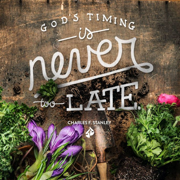 Waiting on the Lord requires faith, but the solution to whatever problem you are facing is in God's hands. God's timing is never too late. Charles F. Stanley
