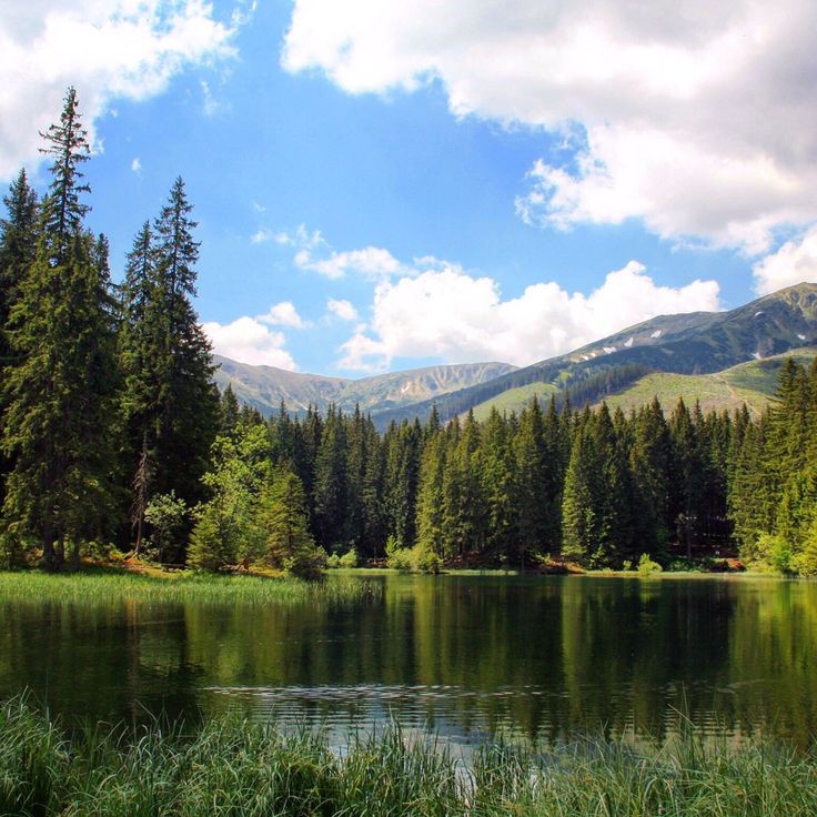 Vrbicke tarn in the Low Tatras in Slovakia. It is a small tarn but the surroundings are beautiful.