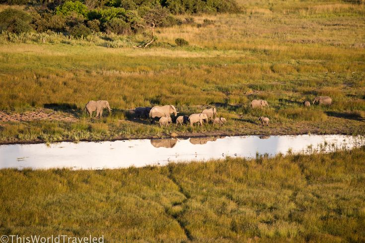 Helicopter Ride in Botswana