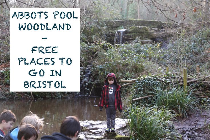 Free Places to Go - Abbots Pool Bristol Video - Fancy a back-to-nature family outing without spending a penny? My video which gives you a taster of Abbots Pool Bristol and tips on how to make the most of your outing. Practically Perfect Mums