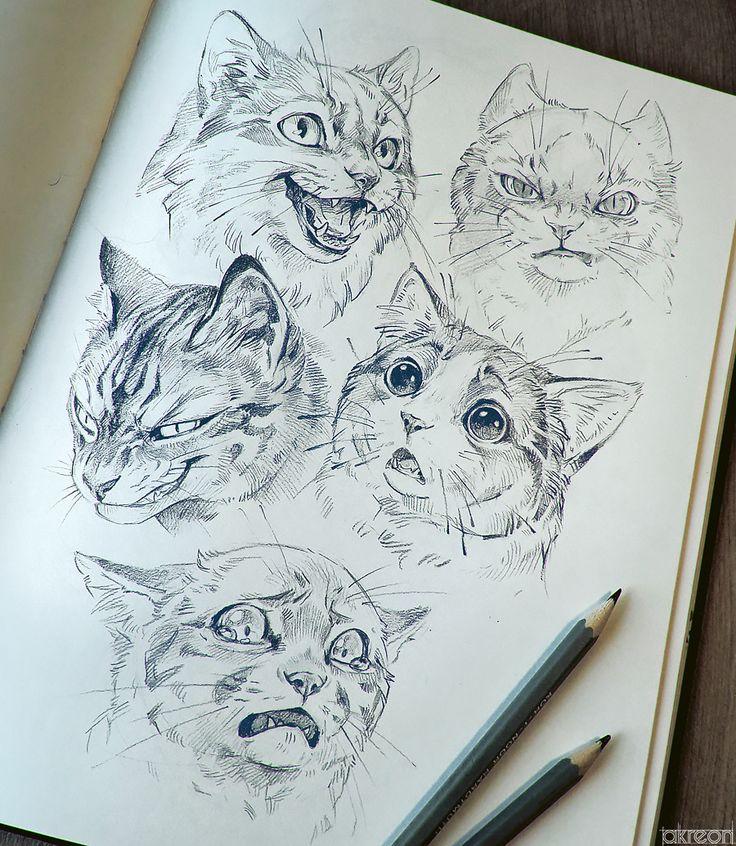 Illustration, Fotografie, Kunst und Steven! Sie werden hier alle möglichen Dinge finden, die mich inspirieren.