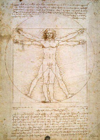 Leonardo da Vinci - Proportions of the human figure, c.1492 - jetzt bestellen auf kunst-fuer-alle.de
