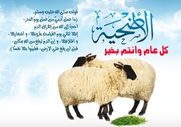 عيد سعيد اضحي مبارك عليكم Greetings Eid Ul Adha Poster