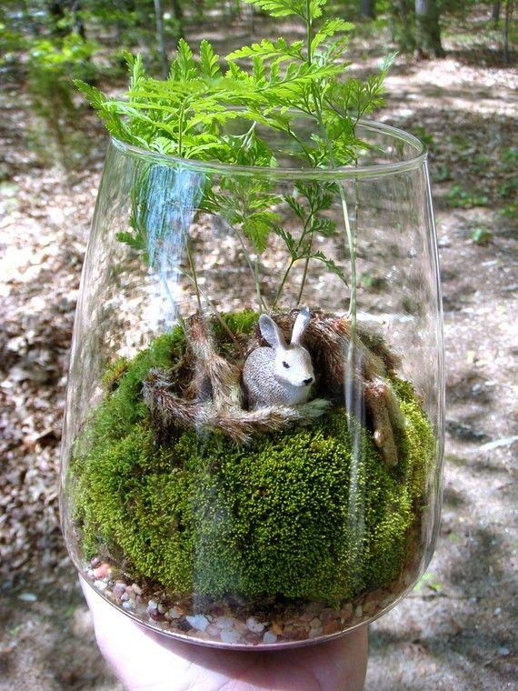 Rabbit terrarium