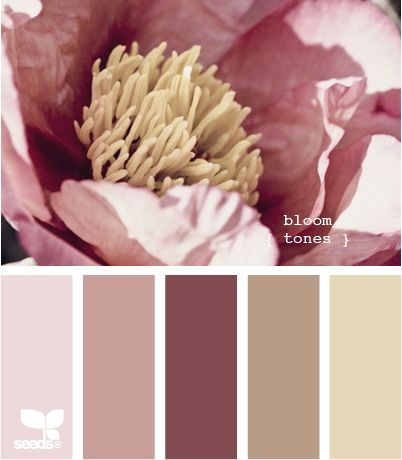 Bloom tones:  Wonderful, wonderful palette of mauve, dusty maroon, pale pink, mushroom, and dark cream.  Nice for a feminine bedroom and bath.