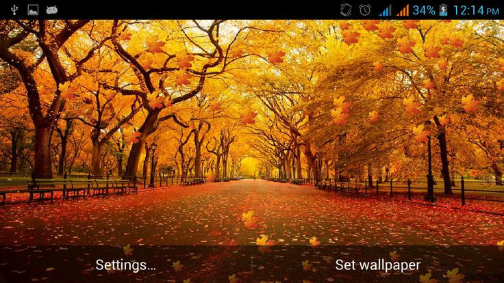 thanksgiving live wallpaper JQ | wallpapertp