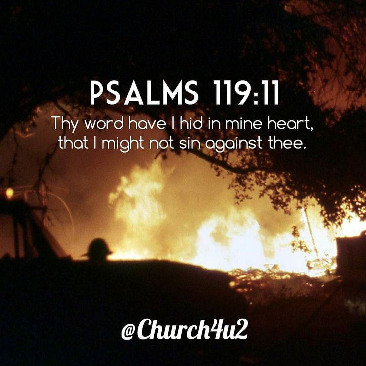 "Psalms 119-11 ""Thy word have I hid in mine heart that I might not sin against thee."" #KingJamesVersion #KingJamesBible #KJVBible #KJV #Bible #BibleVerse #BibleVerseImage #BibleVersePic #Verse #BibleVersePicture #Picture #Pic #Image #KJVBibleVerse #DailyBibleVerse"