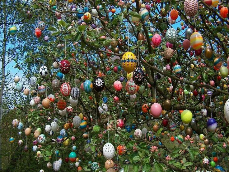 Free Pictures Of Easter In Germany 102