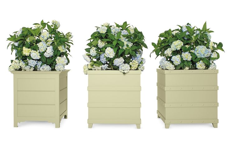 Ardlussa & Inverlussa Palm Boxes - Traditional Transitional Planters - Dering Hall