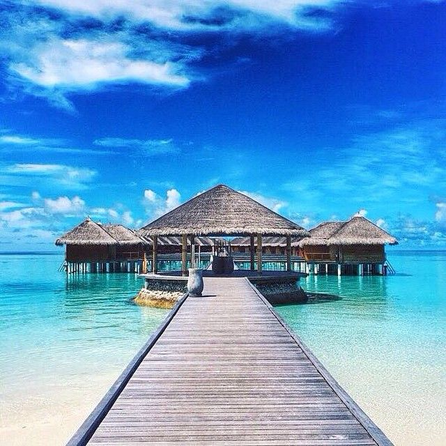 Dreaming of the Maldives. Photo courtesy of cultoflee via missjetsetter on Instagram.