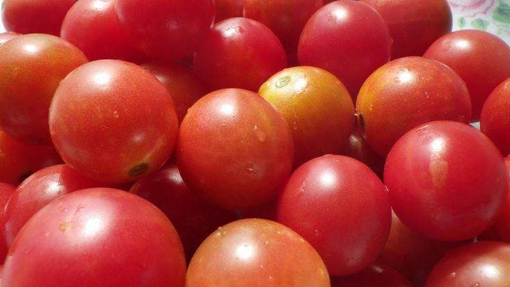 tomato a fruit fruit punch