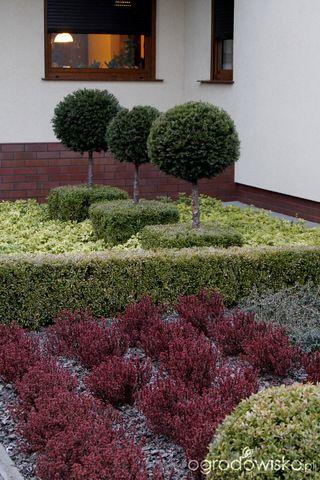 Galeria zdjęć - Najpilniejsze wiosenne prace, czyli jak uporządkować ogród na święta - Ogrodowisko