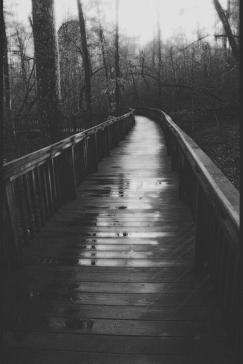 Image via We Heart It https://weheartit.com/entry/95367055/via/6323062 #& #and #black #blackandwhite #blanco #bridge #camino #dark #forest #landscape #nature #negro #nero #places #ponte #sad #tree #trees #way #white #wood #woods #weden #buio