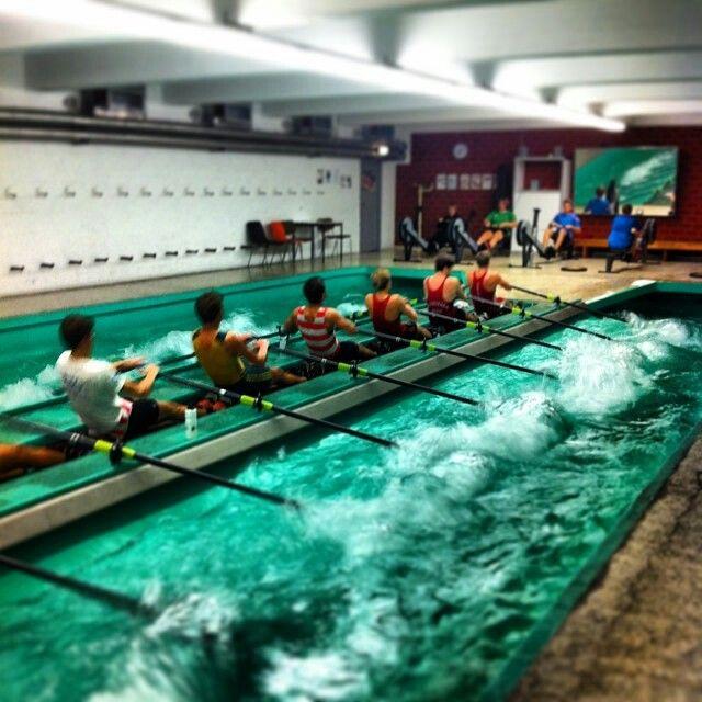 Indoor Rowing Vienna