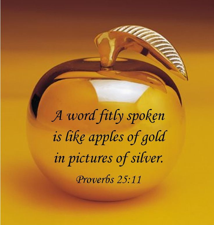 "Proverbs 25:11(KJV) ""A word fitly spoken is like apples of gold in pictures of silver."""