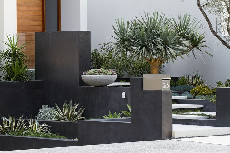 Branksome | Tim Davies Landscaping Succulents and other arid landscape style plants