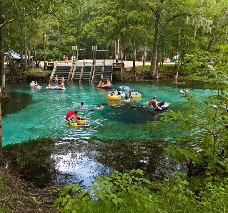 17 Best Images About Ginnie Springs On Pinterest Swim