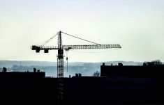 Crane silhouette stock photo