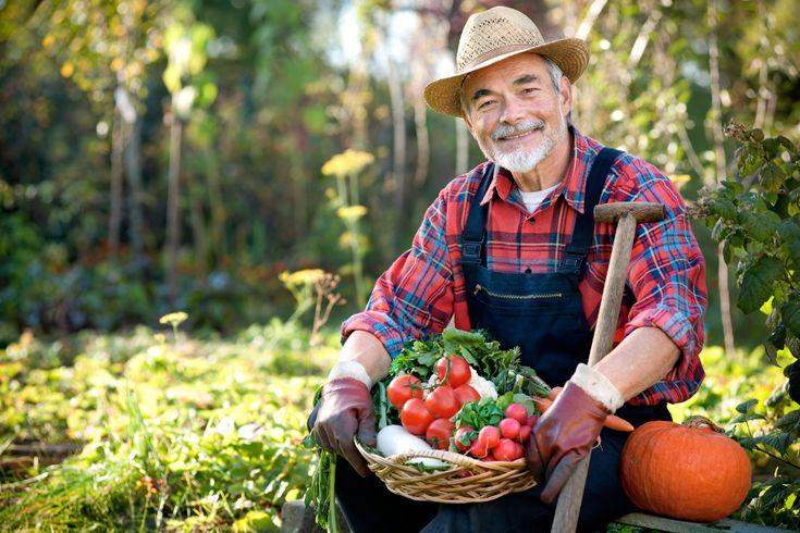 Italiani sempre più agricoltori