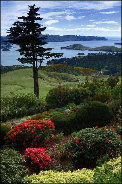 Otago Harbour Otago Peninsula South Island, NEw Zealand
