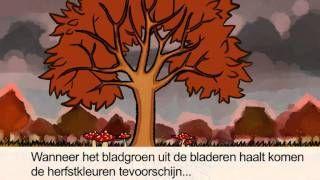 Filmpje over het verkleuren van de bladeren van de bomen in de herfst