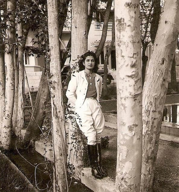 Ashraf Pahlavi: Portrait of a Persian Princess