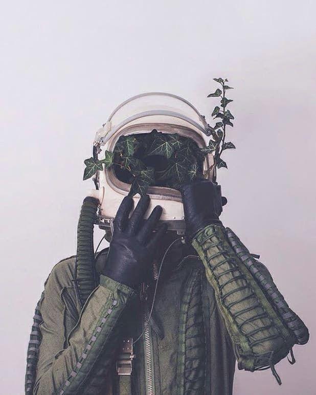 да, меня картинка скафандр с розами цветущий камыш лесной