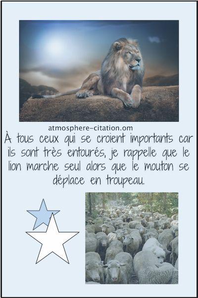Vivre comme un lion  Trouvez encore plus de citations et de dictons sur: http://www.atmosphere-citation.com/les-proverbes-et-dictons-francais/vivre-comme-un-lion.html?