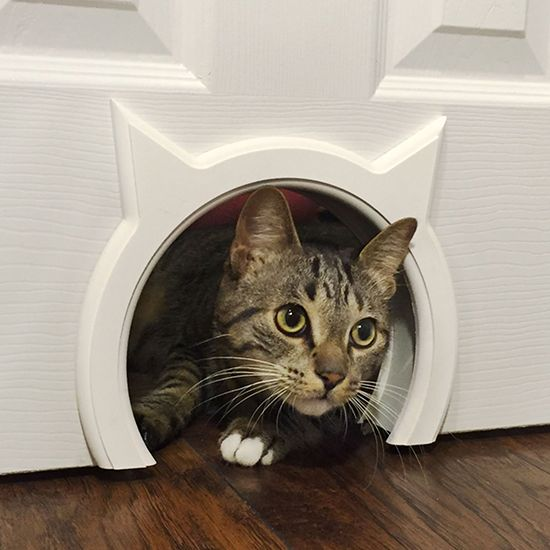 This is brilliant! I've seen lots of DIY ideas for cutting access holes for cats through interior doors but finishing the edges of the cutout is always the biggest challenge. Unless you are a professional carpenter (or want to hire one), the results can be less than attractive. Well, here's a solution! The Kitty Pass Interior Cat…