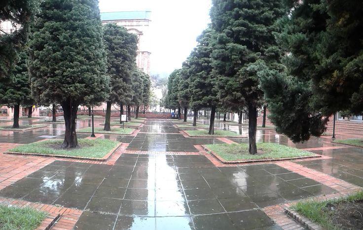dia lluvioso bogota6