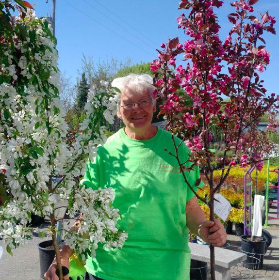 Meet our tree expert, Gladys! Her favorite tree is the flowering crab #StaffPickOfTheWeek