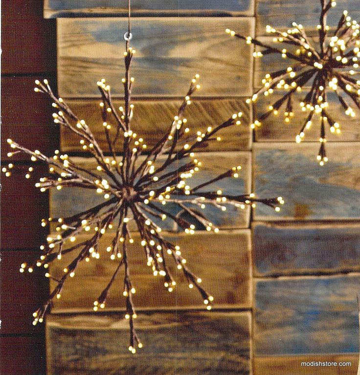 Roost Hanging Branchy Starburst | Roost Hanging Lamps – Modish Store