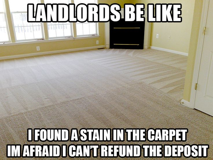 When you are on a budget, finding affordable movers can be difficult. If you are looking for an economical moving company, that is trusted and highly trained, than look no further, give us a call for a free quote today!  #JordanRiverMovingStorage #Kirkland #Washington #move #moving #relocate #relocation #newhome #Professional #ProfessionalMovers #MovingCompany #Apartments #Office #Memes #Funny #MovingMemes