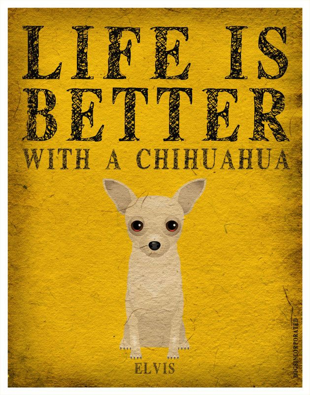 Life is Better with a Chihuahua... Brought to you in part by StoneArtUSA.com ~ affordable custom pet memorials since 2001