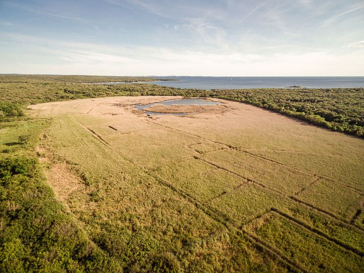 This swampland called Palud is in the northern area of Camping Mon Perin. You can walt or rida trough it and enjoy the beautiful nature: birds, greenery, waters...