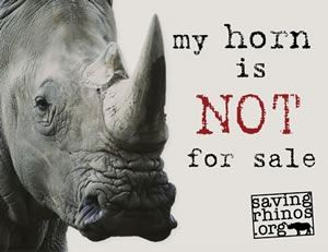 Save the rhino - shoot a poacher