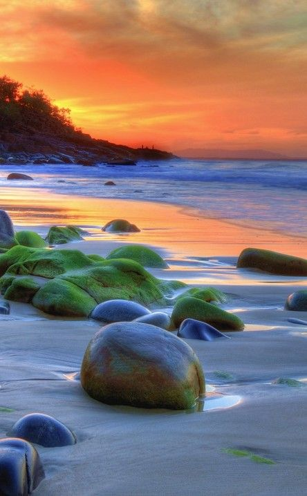 Noosa National Park | Travel | Vacation Ideas | Road Trip | Places to Visit | Noosa Heads | QLD | Water Sports | Hiking Area | Zoo | Historic Site | Scenic Point | Beach | Natural Feature | Nature Reserve