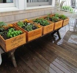 Recycled herb garden in wine box crates.  Would be really easy to recreate using new wood.