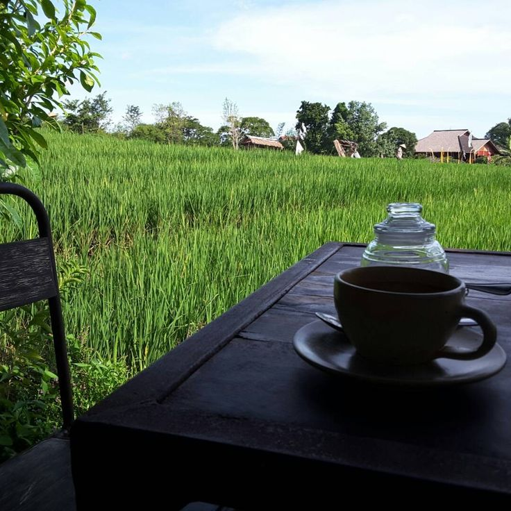Coffee time in canggu with rice terrace view