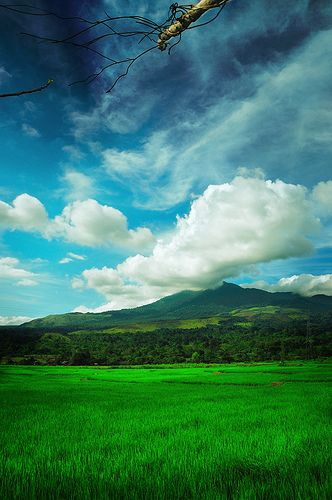 The colors of Seulawah. Nanggroe Aceh Darussalam.
