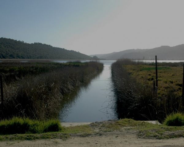 "The ""Rondevlei Langvlei Culvert"" is a slightly different approach to bird watching in the Sedgefield area. From the N2 National road you can take the ""Pine Lake Marina"" resort exit which puts you on sandy road known as ""The Vleie Road"". It is a scenic road that meanders between and around the chain of lakes of the ""Wilderness Lakes Area"".    The lakes are protected and governed by the ""South African National Parks Board"". Fishing in ""Rondevlei and Langvlei"" is prohibited. They are sensitive…"